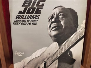 BIG JOE WILLIAMS - THINKING OF WHAT THEY DID TO ME